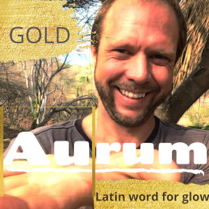 Gold Element Symbol Au on the Periodic Table of the Elements Latin for aurum to glow