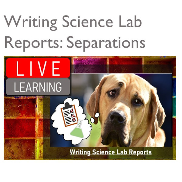 writing lab reports separations experiment