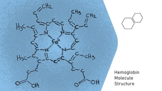 Heme molecule in hemoglobin has iron atom